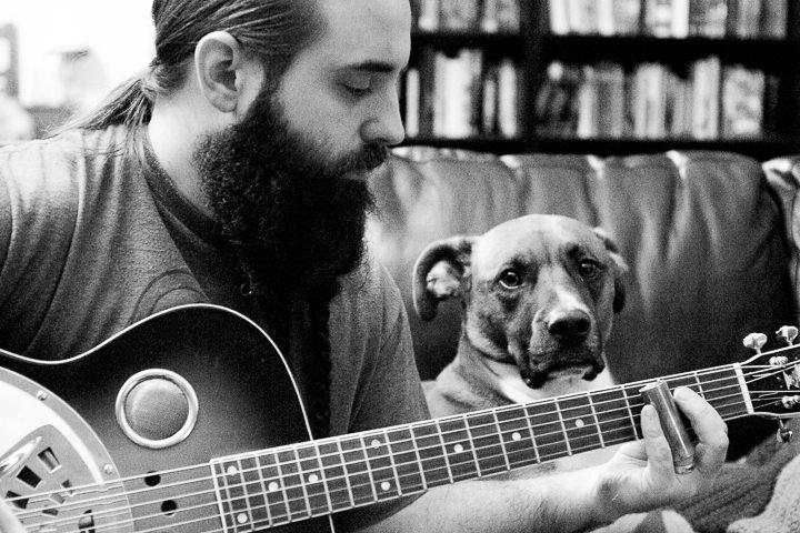blueshound